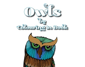 Owl Colouring In Book
