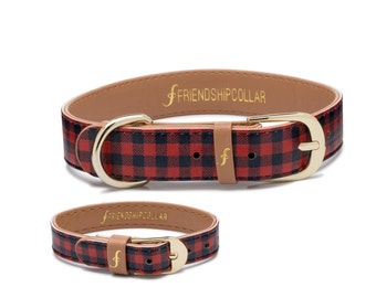 Friendship Collar FriendshipCollar- The Hipster Pup- -Dog FriendshipCollar and matching friendship bracelet #friendshipcollar