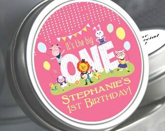 1st Birthday Favors