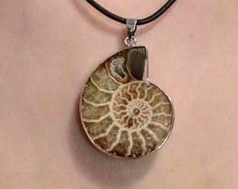 Ammonite Fossil Pendant - Spiral Evolution Symbol - Healing Powers