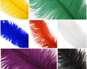 Large #1 Ostrich Feathers - Spad Wing Feathers - Dyed Plumes