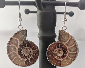 Genuine Ammonite Fossil Earrings - Healing Powers - Sacred Spiral
