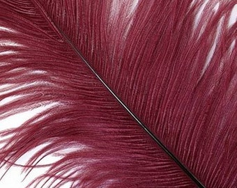 New Stock - Burgundy Large #1 Ostrich Feathers -  Feather - Dyed Plume