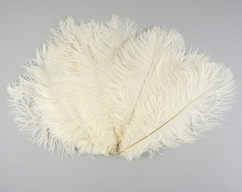 Ivory Off White Medium Ostrich Drab Feather - Dyed Plume - 9-12""