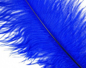 New Color - Royal Blue Medium Ostrich Drab Feather - Dyed Plume