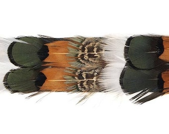 Assorted Pheasant Feather Hatband # 4 - Natural Handmade Hat Band