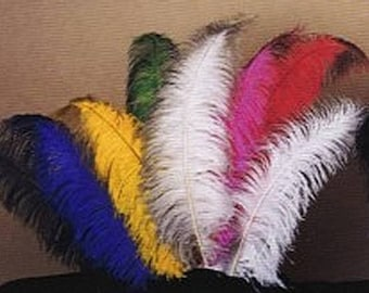 Large #1 Ostrich Feathers - Spad Tail Feathers - Dyed Plumes