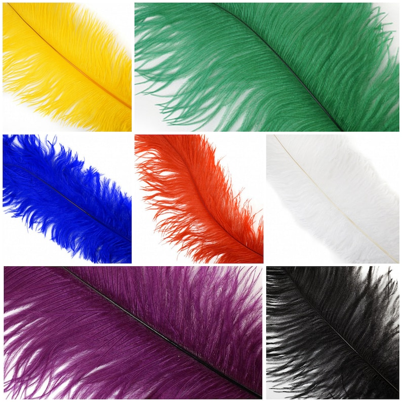 Large 1 Ostrich Feathers  Spad Wing Feathers  Dyed Plumes image 0