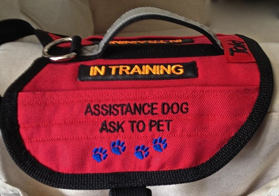 2 Pocket Warm Dog Vest Service Dog In Training Service Dog