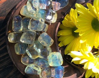 Tumbled Yellow Obsidian. Yellow Obsidian, Tumbled Stones, Crystal Collection, Abundance and Prosperity.