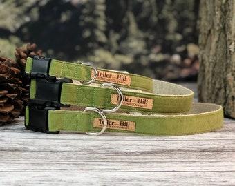 The Saguaro Green Corduroy Flat collar, Fall Dog Collar, Green dog collar, Hemp dog collar, Vegan dog collar, Red Corduroy