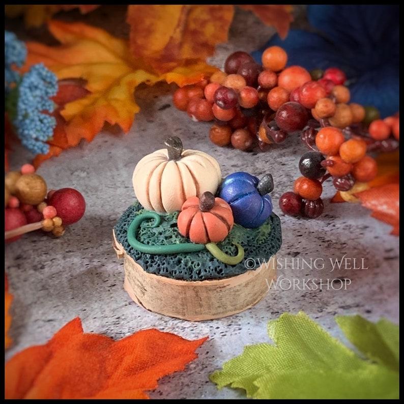 Polymer Clay Pumpkin Patch Pumpkin Patch Miniature Pumpkin image 0