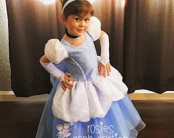 91fcf90f7248 Cinderella dress for Birthday costume or Photo shoot Cinderella dress outfit  Birthday dress Cinderella costume Princess dress for Birthday