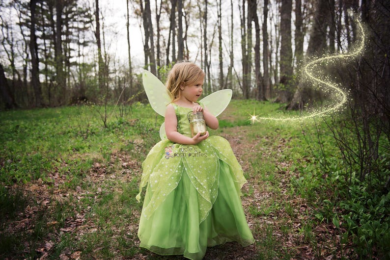 Tinkerbell Fairy dress for Birthday costume or Photo shoot image 0