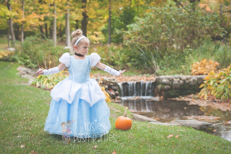 Cinderella dress for Birthday costume or Photo shoot image 0