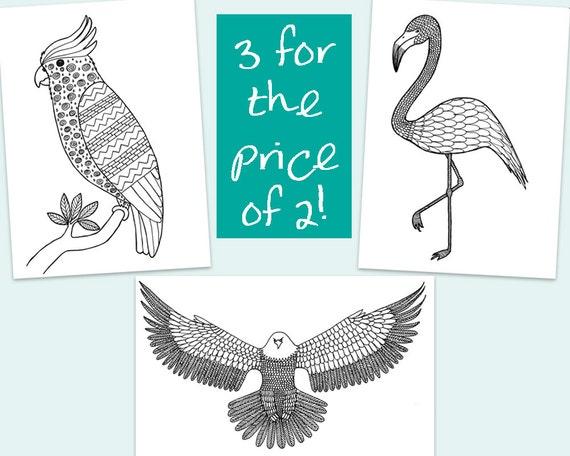 3 colorante para imprimir páginasestampado Flamingo águila   Etsy