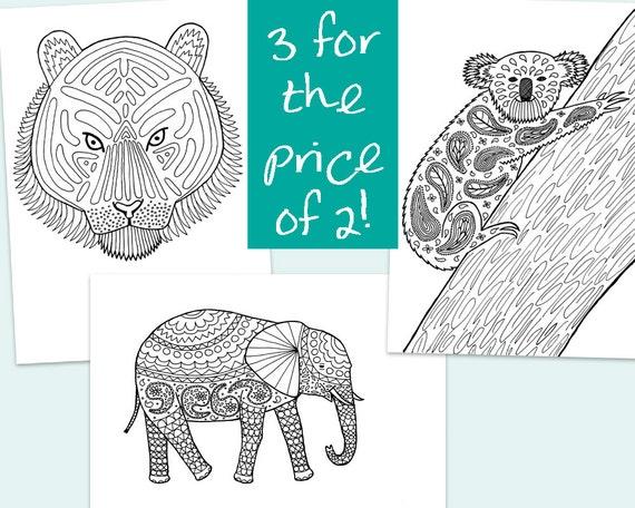3 colorante para imprimir páginasestampado tigre Koala y   Etsy