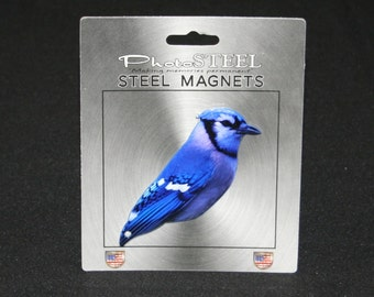 Blue Jay Blessed Wild Bird Refrigerator Tool Box  Magnet Locker