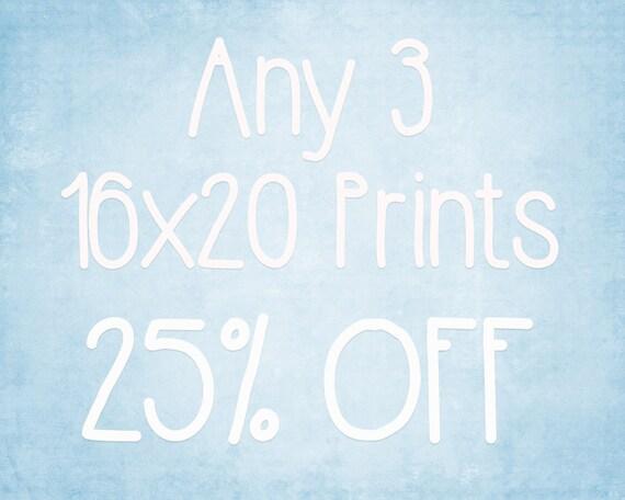16x24 Prints Choose any 3 ColorPopPhotoShop Fine Art Photographs
