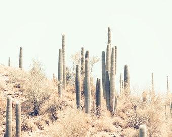 Cactus Photography, Modern Cactus Print, Desert Landscape, Rustic, Saguaro Cactus, Palm Springs Art, Pastel Wall Decor, Mint Green Wall Art