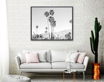 Palm Springs Black and White, Palm Tree, Black and White Photo, California Wall Art, Modern Art, Bedroom Art Print, Modern Palm Springs