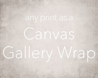 Large Canvas Art, Gallery Wrap Wall Art, Extra Large Wall Art, Fine Art Photography Canvas - 16x20, 16x24, 20x24, 20x30, 24x30, 24x36, 30x40