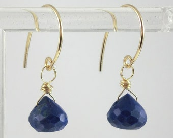 14K Gold Filled Faceted Lapis Lazuli Gemstone Petite Dangle Earrings