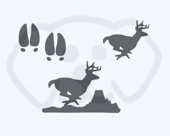 Buck Deer Running Set with Tracks SVG, PDF, PNG, eps, dxf Digital Download Cut File for decals, shirts and more