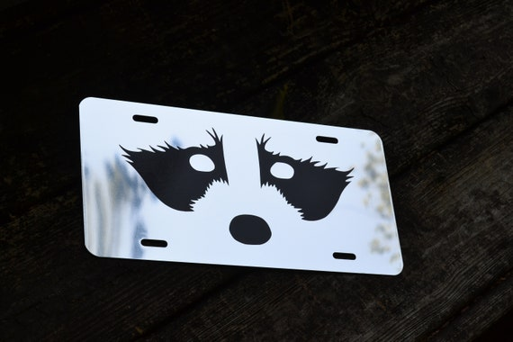 Mirrored Raccoon Face Coon Hunting License Plate