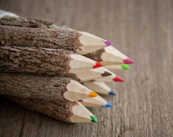 Wooden color pencil set – handmade pens from recycled twigs