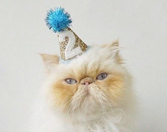 Pet Party Hat   Mini Cat Birthday Party Hat   Mini Cat Party Hat   Dog Birthday Hat   Dog Party Hat   The Pawty Animals   Gold Blue
