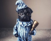 Astrologer Pug