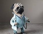 Nurse Pug Doll