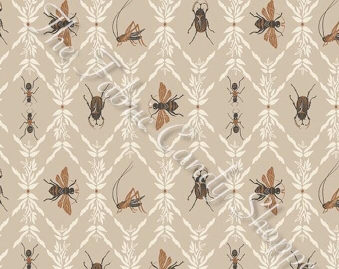 Lambkin by Art Gallery Fabrics - Little Entomologist - Cotton Woven Fabric