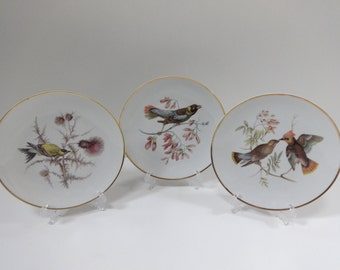 Antiques Ceramics & Porcelain Beautiful Set Of 4 Bavaria Bird Cabinet Plates