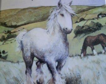 Bonny's Big Day, James Herriot, Vintage Children's Book, Ruth Brown, 1987