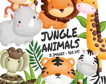 Watercolor Jungle Animal Clipart - Cute Animal - Safari Clipart
