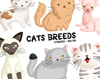 Cat Breed Clipart - Cute Animal Clip Art - Home Pet Cat - Free SVG on Request