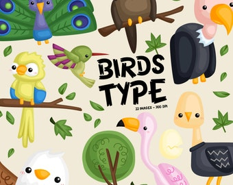 Bird Type Clipart - Cute Animal Clip Art - Cute Bird - Free SVG on Request