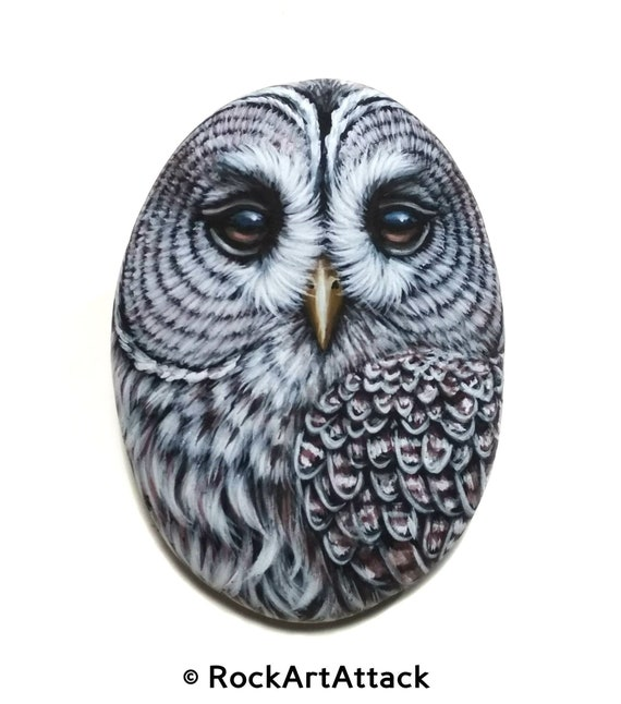 Barred Owl Acrylic Painting On Flat Sea Stone!Owl home decor. Finished with satin varnish. Painted stones, Bird Stone Art. Rock Painting Art