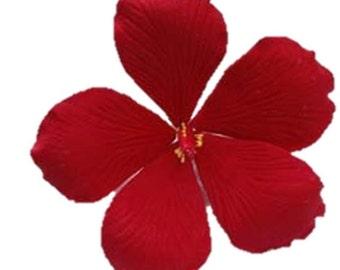 Gumpaste Hibiscus Etsy