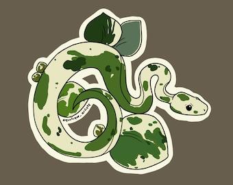 Peperomia Ball Python Sticker