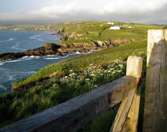 Cornish Coast Over the Fence