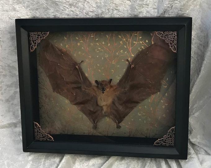 Framed Bat - Metallic Botanical