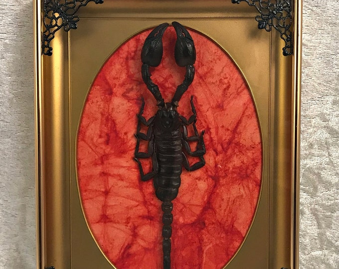 Giant Forrest Scorpion