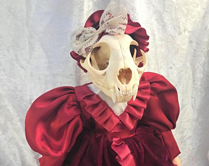 Bobcat Skull Victorian Doll