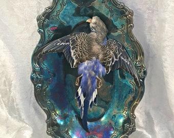 Blue Budgie Parakeet: Bird Taxidermy
