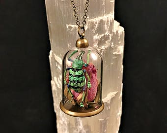 Insect Dome Necklaces: Beetles and Bees