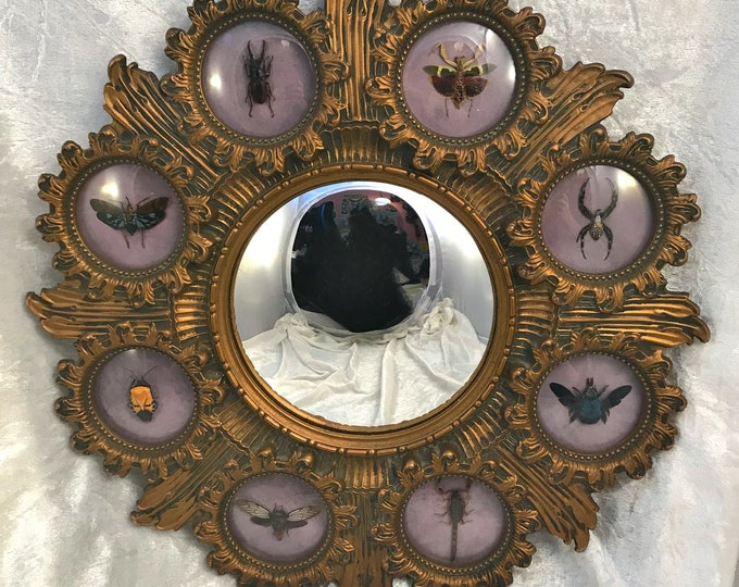 Ornate Insect Mirror