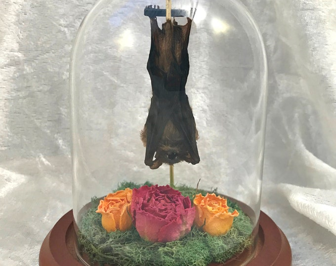 Mini Sleeping Bat Dome: Dried Roses